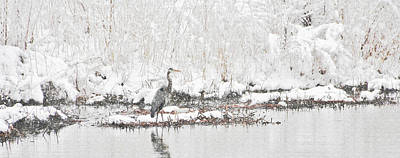 Photograph - Snow Fishing by Diane Alexander