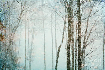 Flurries Photograph - Snow Flurries by Kim Fearheiley
