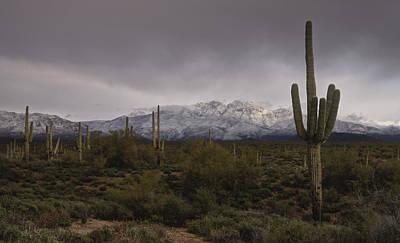 Photograph - Snow Frosted Four Peaks  by Saija  Lehtonen