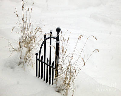 Photograph - Snow Gate by Patricia Januszkiewicz