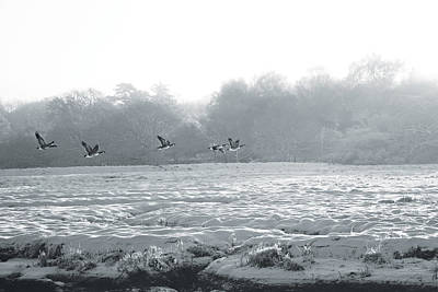 Digital Art - Snow And Geese by David Davies