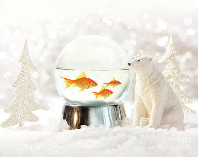 Snow Globe In  Winter Scene Art Print by Sandra Cunningham