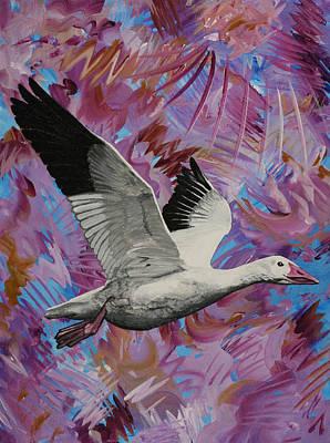 Painting - Snow Goose In Flight by Julianne Hunter