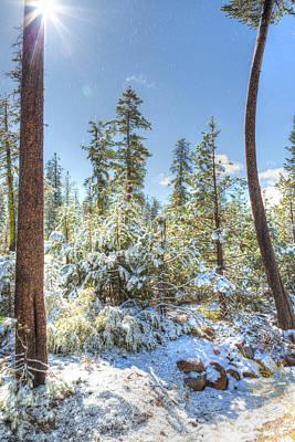 Photograph - Snow In Nevada by Susan Leonard