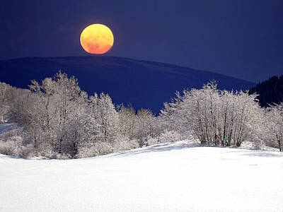 Photograph - Snow In The Moonlight 01 by Giorgio Darrigo