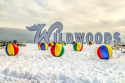 Photograph - Snow In Wildwood by Nick Zelinsky