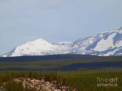 Photograph - Snow In Yellowstone by Tammy Bullard