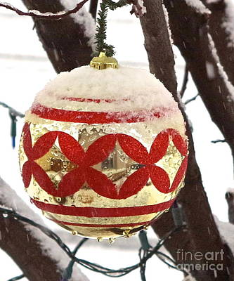 Photograph - Snow Just In Time For Christmas by Phyllis Kaltenbach
