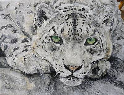 Pigatopia Painting - Snow Leopard Big Cat Oil Painting Hand Painted 8 X 10 Made To Order By Pigatopia by Shannon Ivins