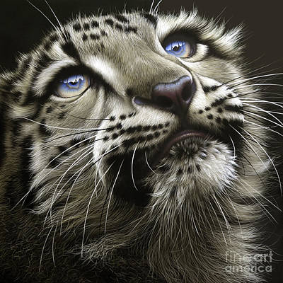 Cat Painting - Snow Leopard Cub by Jurek Zamoyski