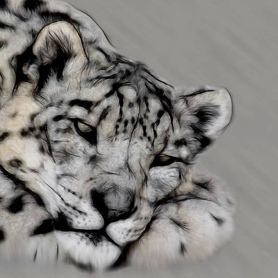 Digital Art - Snow Leopard Digital Art by Ernie Echols