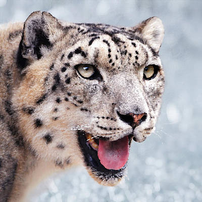 Snow Leopard Painting - Snow Leopard Painting by Nicole Gardner