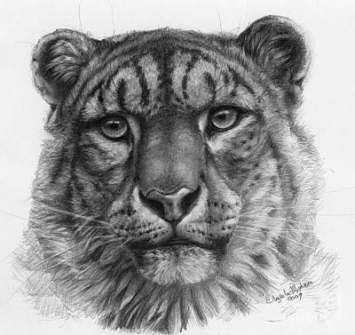 Snow Leopard - Panthera Uncia Portrait Art Print by Svetlana Ledneva-Schukina