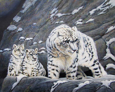Snow Leopard Protects Her Cubs Art Print by Charles Wallis