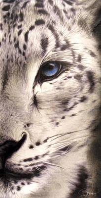 Leopard Drawing - Snow Leopard by Sheena Pike