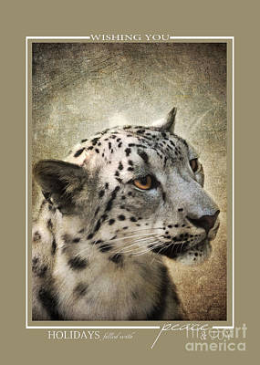 Photograph - Snow Leopard Wildlife Christmas Cards by Jai Johnson