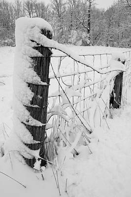 Woven Wire Photograph - Snow Load by Sam Perry