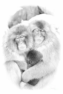 Digital Art - Snow Monkey Character Study Vi by Michele Steffey
