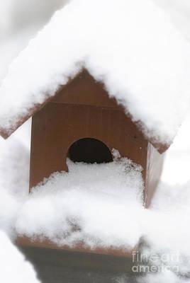 Snow On Bird House Art Print by Birgit Tyrrell