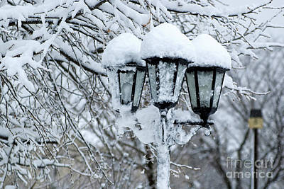 Snow On Lamps Art Print
