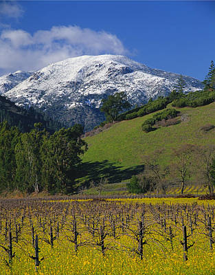 Photograph - 4b6385-snow On Mt. St. Helena In Napa Valley by Ed  Cooper Photography