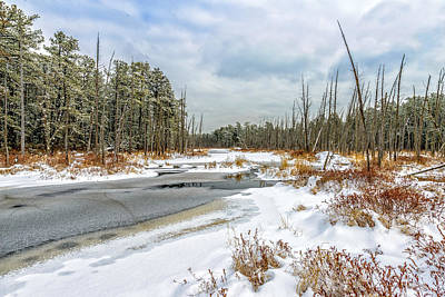 Pine Barrens Photograph - Snow On Roberts Branch by Louis Dallara