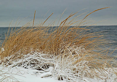 Photograph - Snow On The Dunes by Nancy Landry