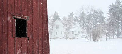 Photograph - Snow On The Farm by Tim Good