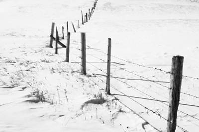 Snow Packed Fence Line Art Print by Michele Richter