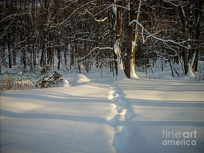 Snow Path Art Print by Randi Shenkman