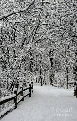 Photograph - Snow Path Through Nemo Aftermath by Deborah Smolinske