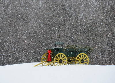 Photograph - Snow Ride by Tricia Marchlik