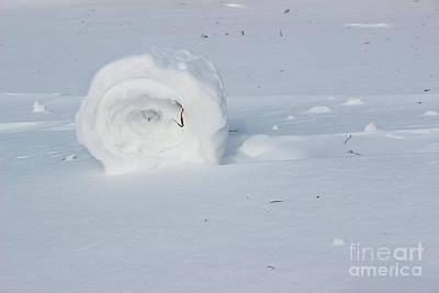 Rolled Yard Photograph - Snow Roller by Karen Adams