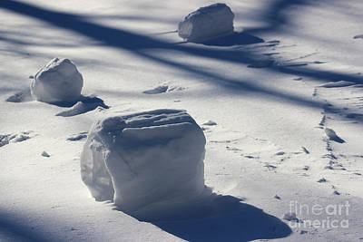 Snow Roller Trio In Shadows Art Print by Karen Adams