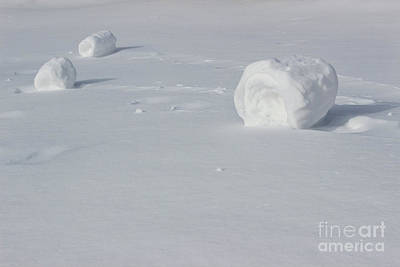 Rolled Yard Photograph - Snow Roller Trio by Karen Adams