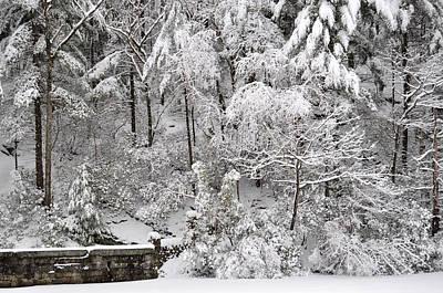 Photograph - Snow Scene 5 by Staci Bigelow