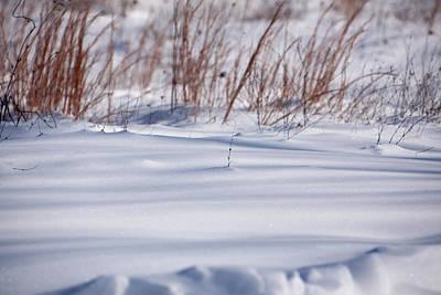 Photograph - Snow by Scott Sanders