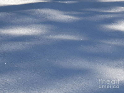 Art Print featuring the photograph Snow Shadows by Rachel Lowry