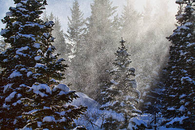 Snow Squalls Art Print by Jim Garrison