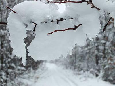 Snow Storm 4 Art Print by Gene Cyr