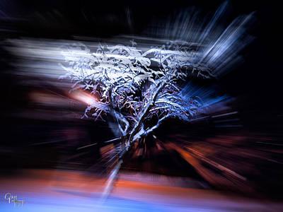 Photograph - Snow Storm  by Glenn Feron