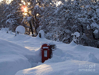 Photograph - Snow Wrapped Postbox  by Phil Banks