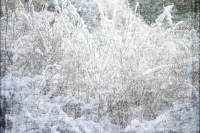 Snow Textures Art Print by Suzanne Powers