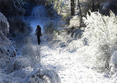 Photograph - Snow Walking 2 by Ronda Broatch