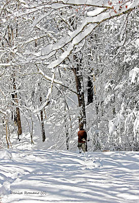 Art Print featuring the photograph Snow Walking by Denise Romano