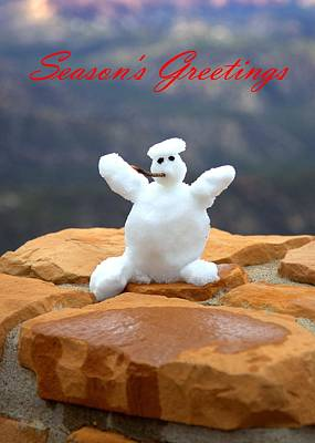 Photograph - Snowball Snowman by Gordon Elwell