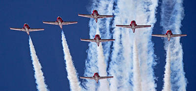 Photograph - Snowbirds 2014 by Randy Hall