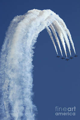 Photograph - Snowbirds Over The Edge by Bob Christopher
