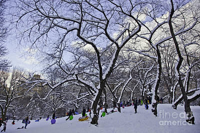 Snowboarder Photograph - Snowboarders In Central Park by Madeline Ellis