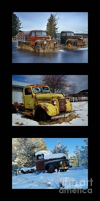 Photograph - Snowbounds Boys by Idaho Scenic Images Linda Lantzy